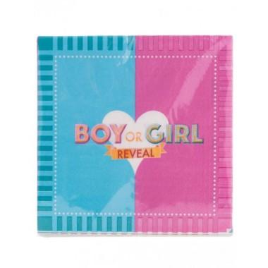 Szalvéta 33x33cm 20db Girl or Boy