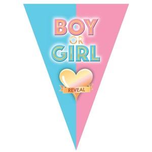 Party zászló BOY OR GIRL felirattal
