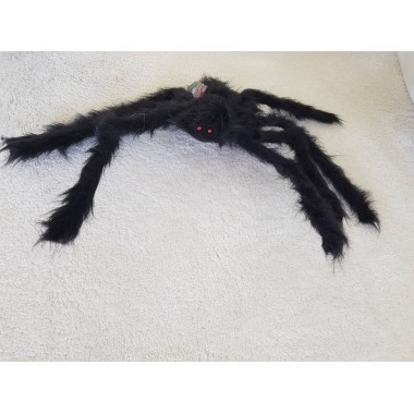 Nagyméretű, szőrős fekete pók