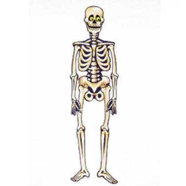 Halloween-re Csontváz Dekoráció