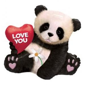 Panda maci fóliás 34' szerelmes lufi