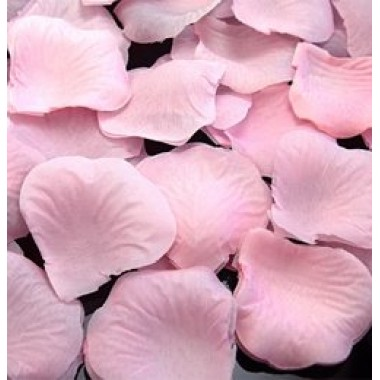 Szirom világos rózsaszín